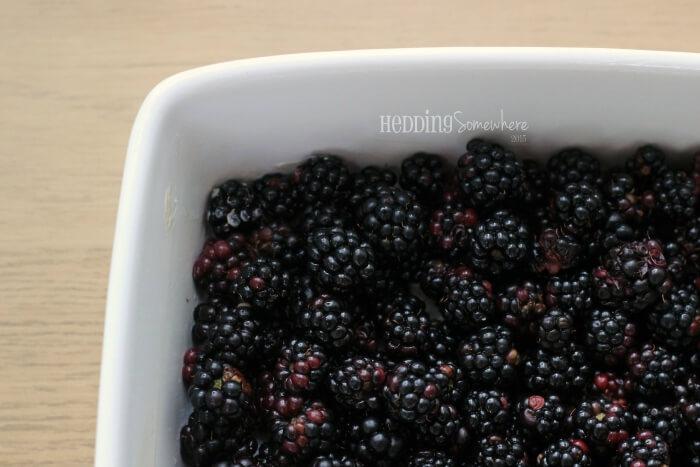 205 blackberries