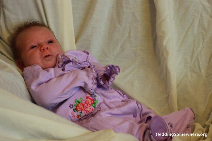 Eva Joy 1 month photo