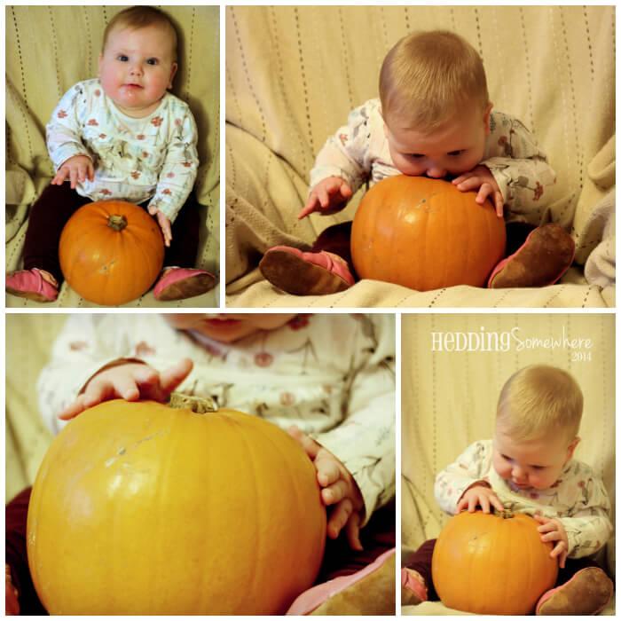 Eva Joy - 7 Months Collage